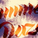 Summer Daze's album cover (Image: Cool Company)